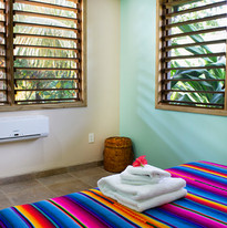 Room in Iguana Suite