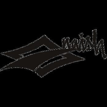 naish-logo.png