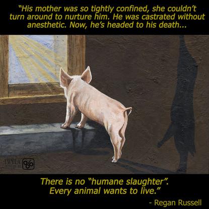 Regan Russell Quote