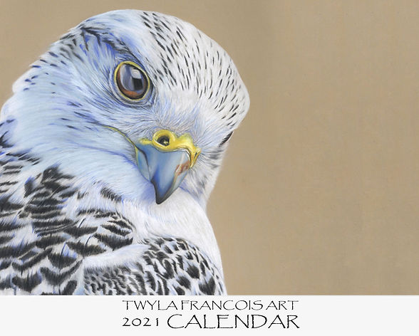 2021 Calendar  cover design with falcon.