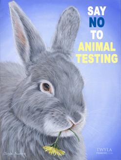 Say No to Animal Testing