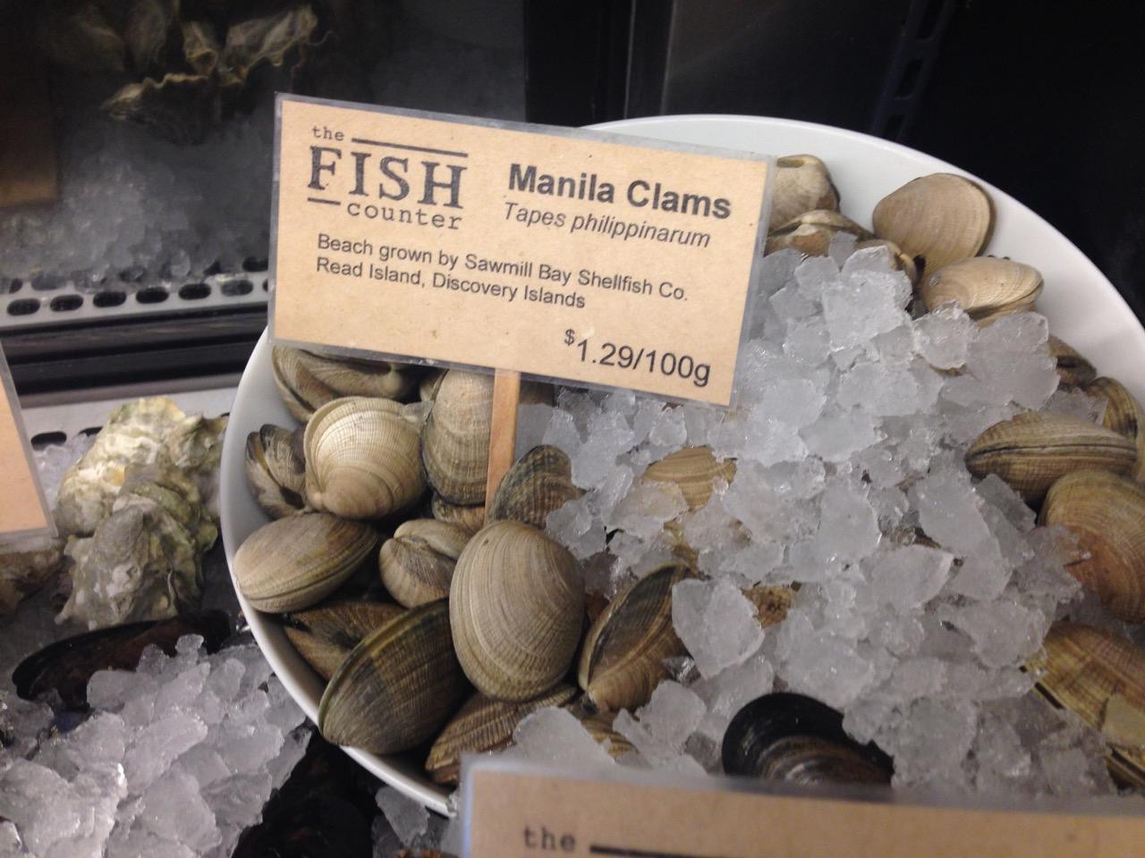 Manila Clams