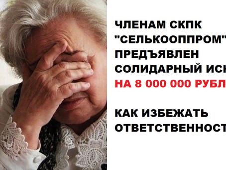 """КСПОК Гарант Кубани предъявил иск членам СКПК """"Селькооппром"""", что делать?"""