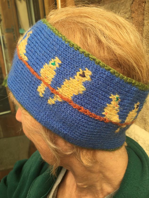 Chirpie Headband