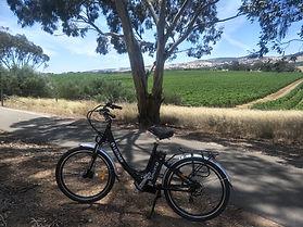 Electric bike.jpg