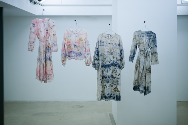 botanical dye clothese