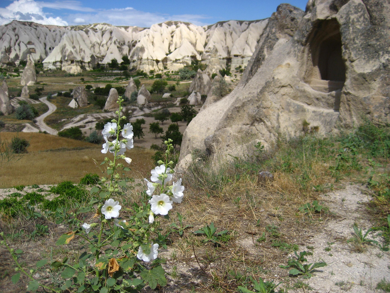 Cappadochia, Turkey