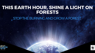 For Haze's Sake! Focus Is On Forests In This Year's Earth Hour