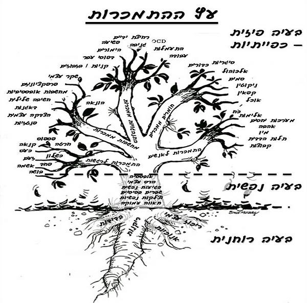 מכללת טאותרפיה | עץ ההתמכרות