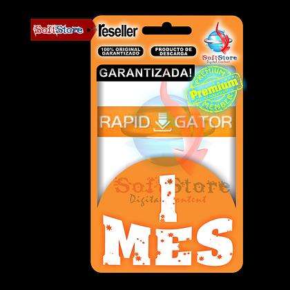 Cuenta Premium RapidGator, 1 mes (500gb x mes)