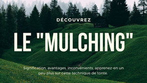 Robot tondeuse et Mulching : Les explications