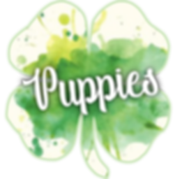 trotting poodle logo puppies.png