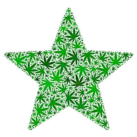 Star%20Hemp_edited.jpg