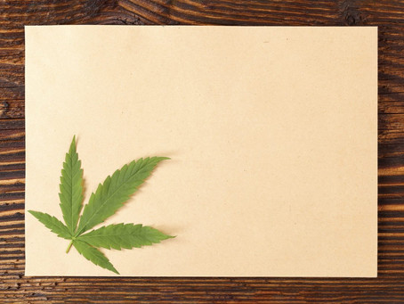 Hemp Paper: The right choice for the environment