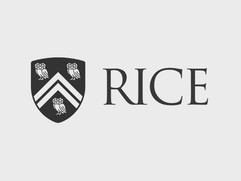 rice.jpg