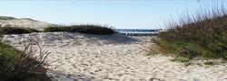 L'Océan des Landes - La Dune