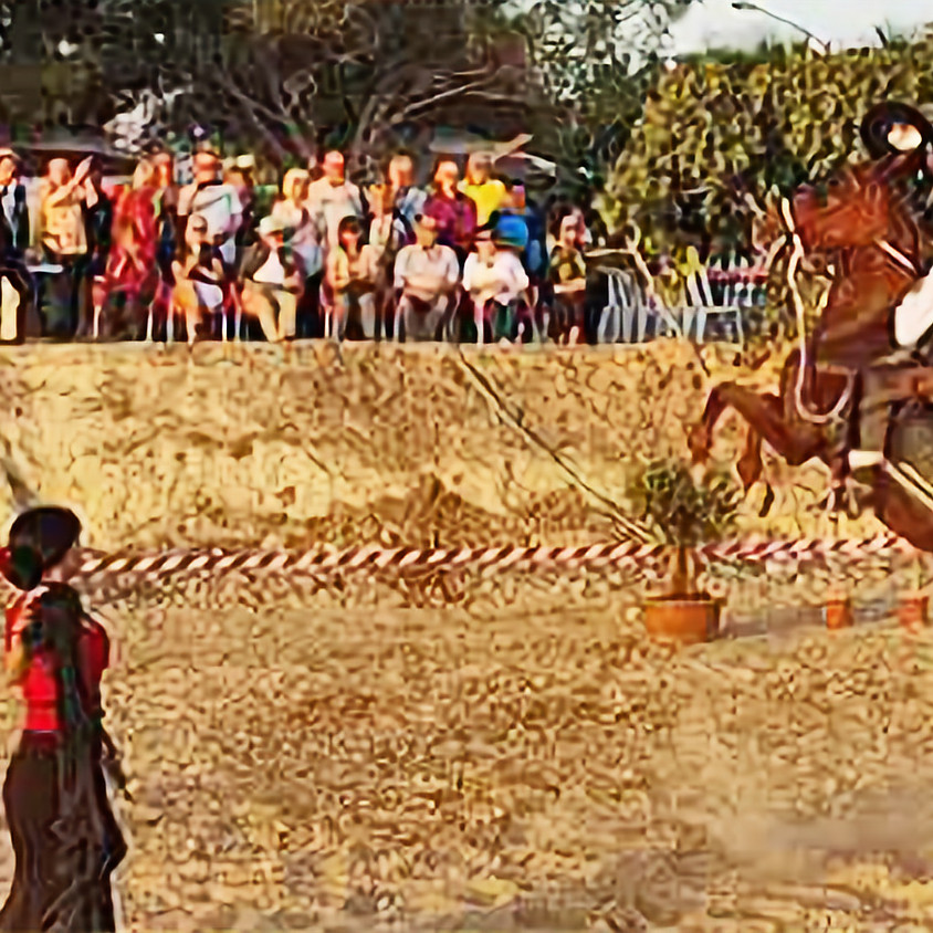 Vårfest med flamenco- och hästshow och stor gemensam festmåltid.