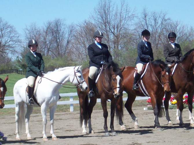 Equestrian Sport Activities