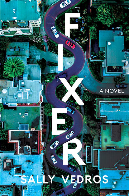 Fixer: A Novel