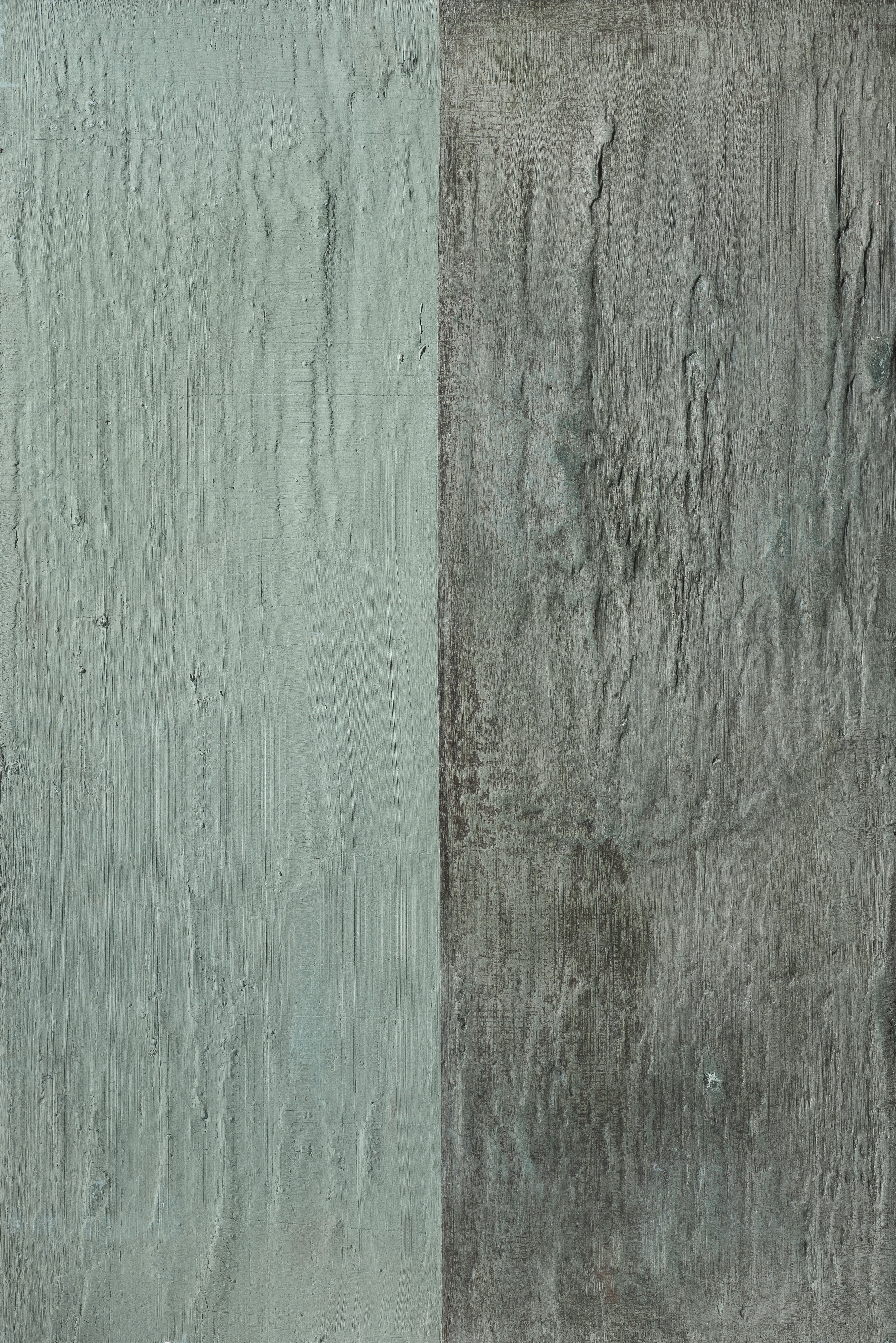 Bleu bark