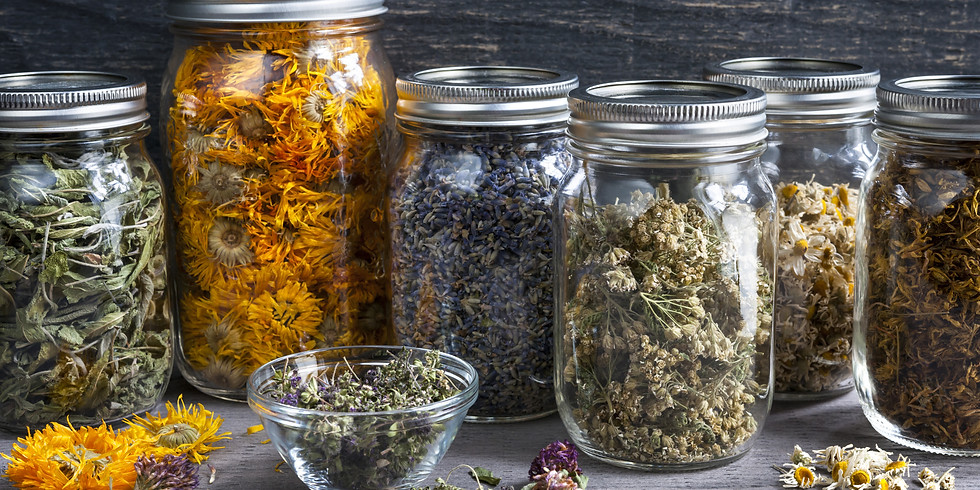 Become A Home Herbalist 2022