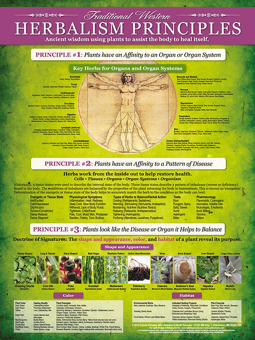 Traditional Western Herbalism Principles Poster
