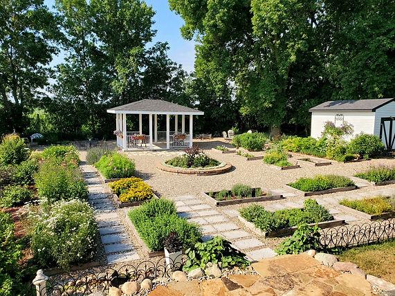 Herbal garden July 2021.jpg