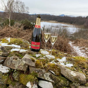 Picnic on the South boundary overlooking Muir loch and the Trossachs