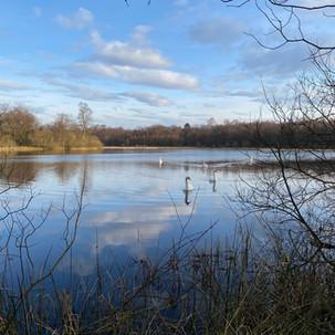 Muir Loch