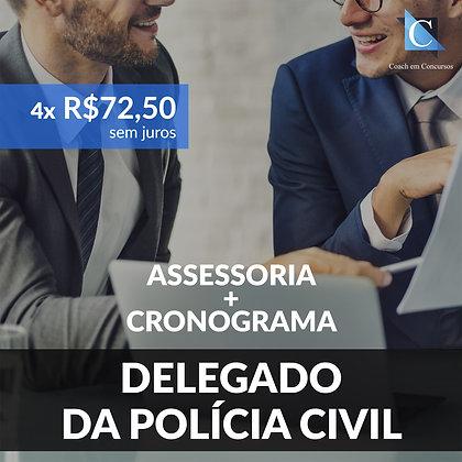 Assessoria - Delegado da Polícia Civil - Plano Mensal