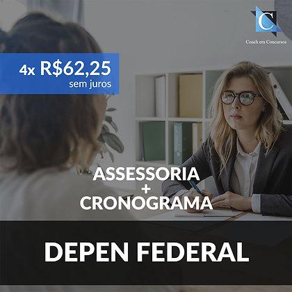 Assessoria - DEPEN Federal - Plano Mensal