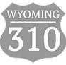 wy310_edited.png