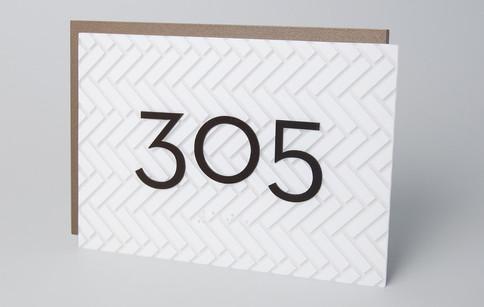 Texture 305