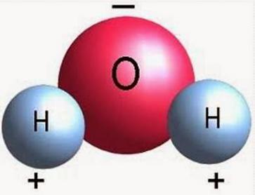 WATER MOLECULE 1.png