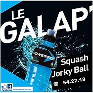 Logo GALAP 2019.JPG