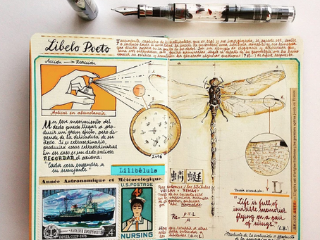 José Naranja And His Sketchbooks Teeming with Colourful Calligraphy, Diagrams, and Travel Ephemera
