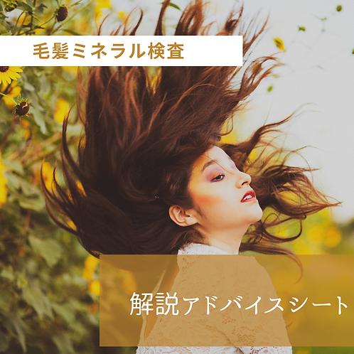 毛髪ミネラル検査(オリジナル解説アドバイスシートのみ)