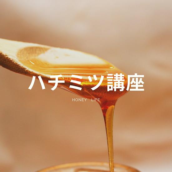 ハチミツ講座(オンライン版)