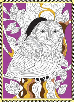 owl.with border coloured