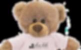 Dennis the Dentist Bear - Slave Lake Dental Mascot - Dennis the Bear