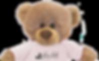 Dennis the Bear Dentist Mascot