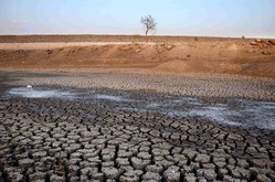 Water scarcity begins to take toll on sub-continental farming!  Water Gel for Agriculture?