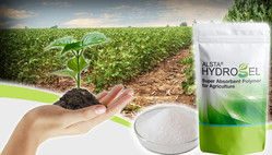 Non-toxic Hydrogel as Water Absorber for Agriculture