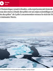 Les glaciers d'Antarctique sur la Terre au carré