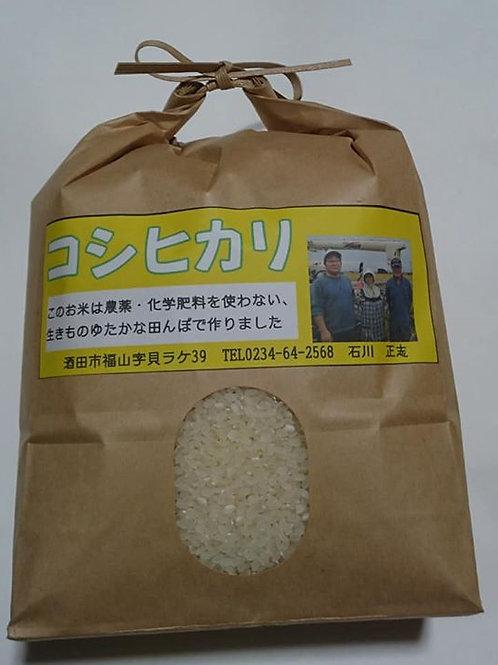 コシヒカリ 3kg