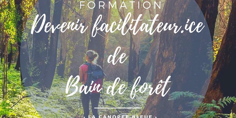 """Formation """" Devenir facilitateur.ice de Bain de forêt"""""""