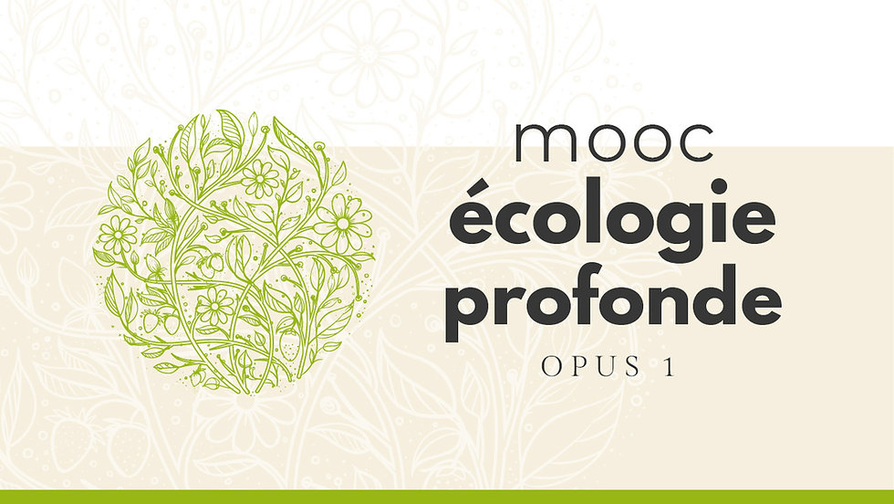 mooc-ecologie-opus1-v02_banniere-web-128