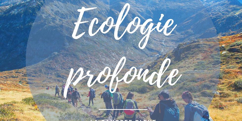 """Formation """" Devenir facilitateur.ice en Ecopsychologie et Ecologie profonde"""""""