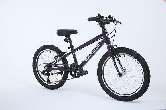 DOMESTIC 20 אופניי ילדים