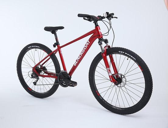 BG MT 29 אופניי